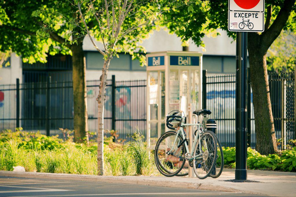 street-tree-bell-bike